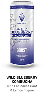 Root Wild Blueberry Boost Kombucha