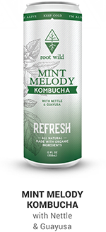 Root Wild Mint Refresh Kombucha